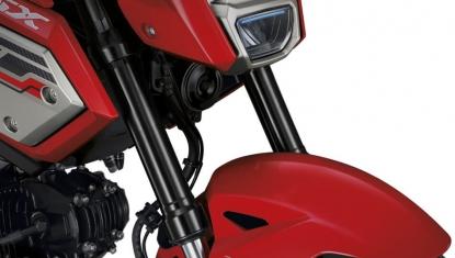 Honda-Motorcycle-มอเตอร์ไซค์-ฮอนด้า-MSX125SF-2017-Information-รายละเอียด-โช้กคู่หน้าหัวกลับ-UPSIDE-DOWN-SHOCK-ABSORBER