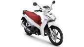Honda-Motorcycle-มอเตอร์ไซค์-ฮอนด้า-All New Wave 125i-color-ขาว-แดง