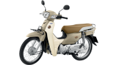 Honda-Motorcycle-มอเตอร์ไซค์-ฮอนด้า-supercub-2017-color-Brown-White-สีน้ำตาล-ขาว