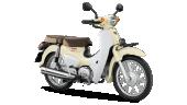 Honda-Motorcycle-มอเตอร์ไซค์-ฮอนด้า-supercub-2018-color-White-สีขาว
