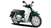 Honda-Motorcycle-มอเตอร์ไซค์-ฮอนด้า-supercub-2018-color-Green-White-สีเขียว-สีขาว
