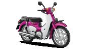 Honda-Motorcycle-มอเตอร์ไซค์-ฮอนด้า-supercub-2018-color-Pink-White-สีชมพู-สีขาว