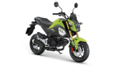 Honda-Motorcycle-มอเตอร์ไซค์-ฮอนด้า--MSX125FX-2018-color-Standard-Incredible Green