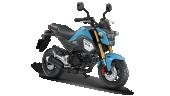 Honda-Motorcycle-มอเตอร์ไซค์-ฮอนด้า--MSX125FX-2018-color-Standard-Splendid-Blue