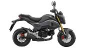 Honda-Motorcycle-มอเตอร์ไซค์-ฮอนด้า-msz125-2016-color-Black-Grey-สีดำ-สีเทา