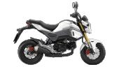 Honda-Motorcycle-มอเตอร์ไซค์-ฮอนด้า-msz125-2016-color-White-Grey-สีขาว-สีเทา