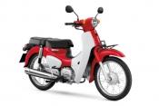 Honda-Motorcycle-มอเตอร์ไซค์-ฮอนด้า-super-cub-2018