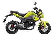 Honda-Motorcycle-มอเตอร์ไซค์-ฮอนด้า-msx125sf-2016