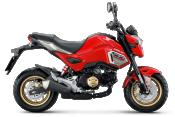 Honda-Motorcycle-มอเตอร์ไซค์-ฮอนด้า-MSX125SF-2017