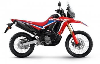 AllNew  CRF300RALLY